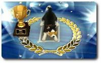 三冠犬2.jpg
