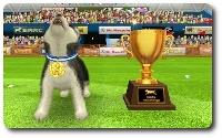 三冠犬3.jpg